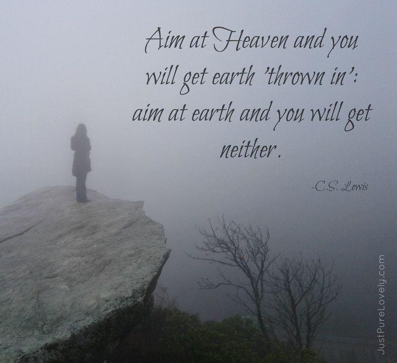 C.S. Lewis Quote on JustPureLovely.com. Photo copyright Tim Seaborg 2011